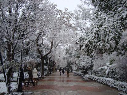 Paseo de Cánovas Nevado