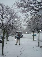 Nieve en Elvas