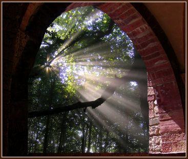Luz en el hayal