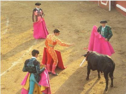 Pablo Mart�nez Bienvenida, certera media estocada