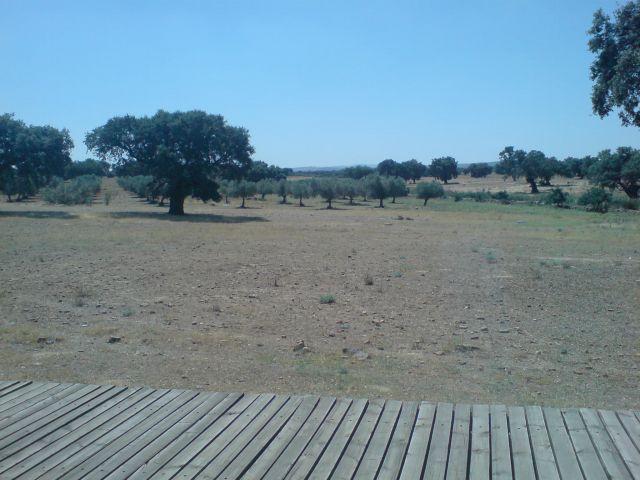 Vistas desde Cancho Roano