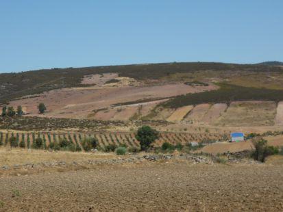 Paisaje del Valle