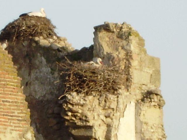 detalle del palacio caido
