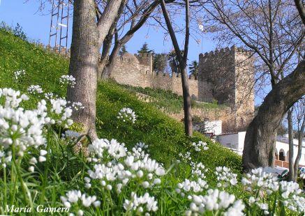 La muralla en primavera