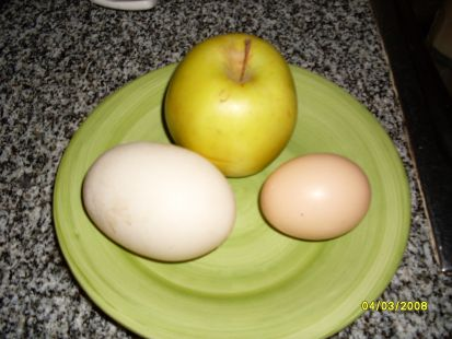un gran huevo de gallina
