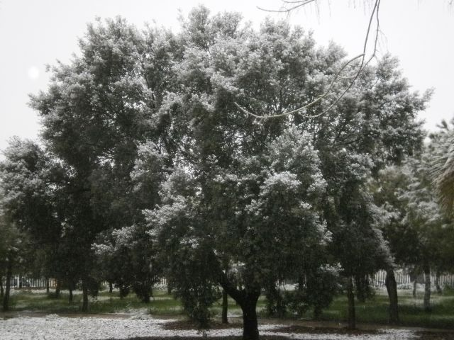 Nieve en Villafranca de los Barros