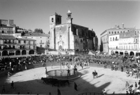 Toros en la plaza mayor de Trujillo